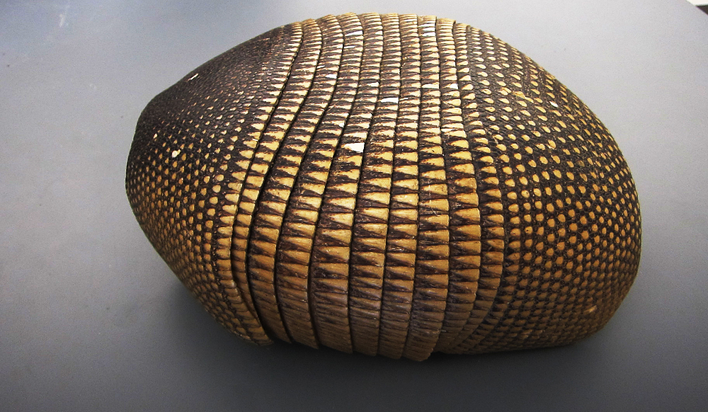 how strong is an armadillo shell